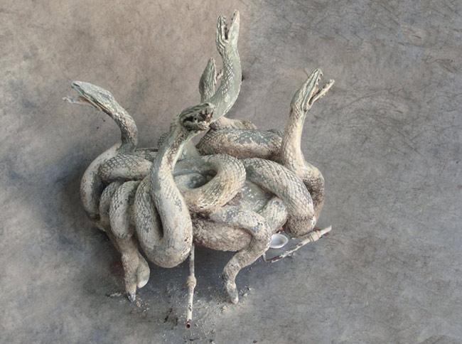 Fontaine  aux serpents  en bronze . Fondeur Susse